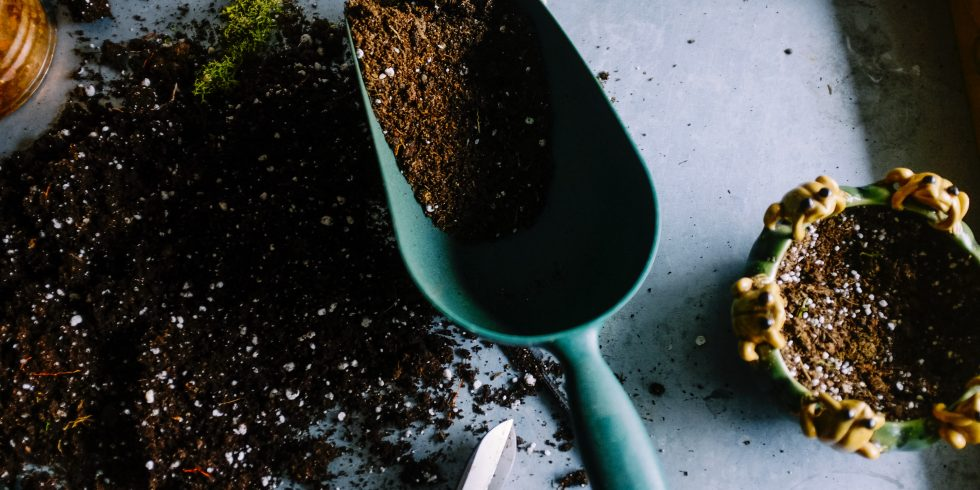 Learn How to Compost